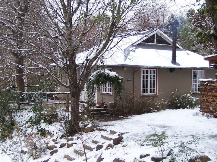 Romantic Studio-Cottage at Maple Grove in Hogsback