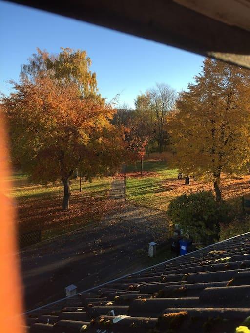 Blick aus dem Badfenster auf den Spielplatz