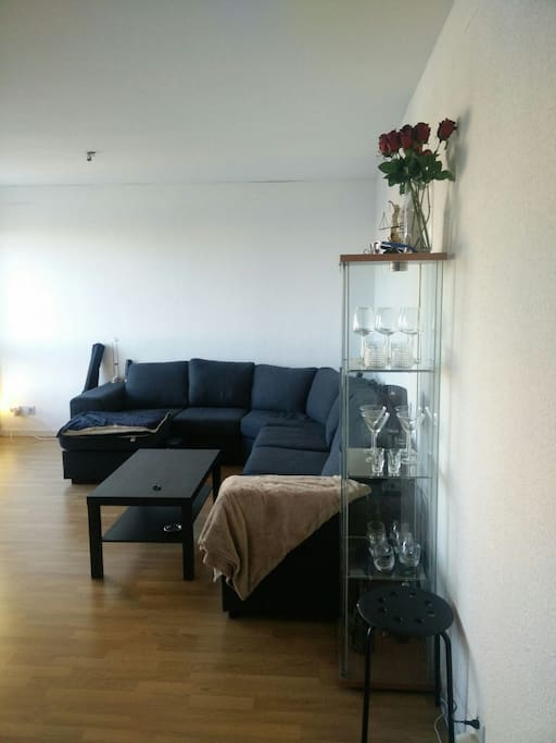 Living room with sofa (bed for two).