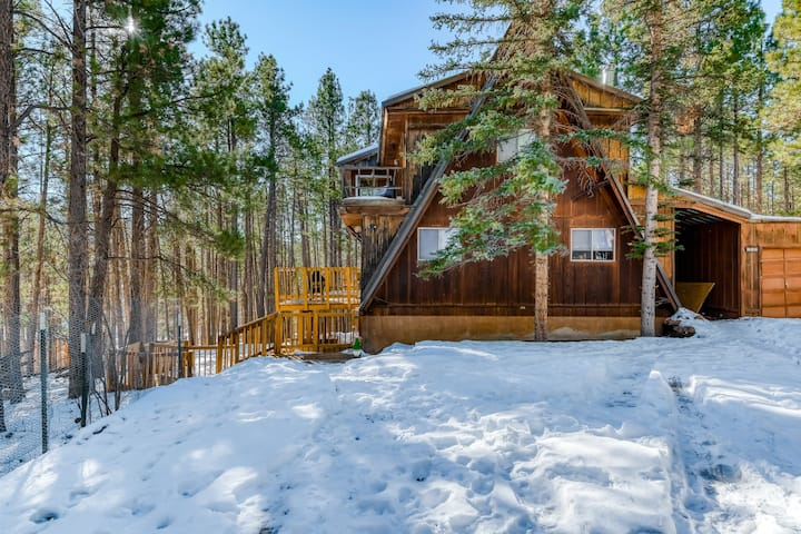 Dog-Friendly Home w/ Gas Fireplace & Kids' Playroom - Near Ski Resort!