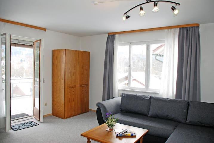 Pension Bayerwald (Frauenau), Große Ferienwohnung mit Balkon