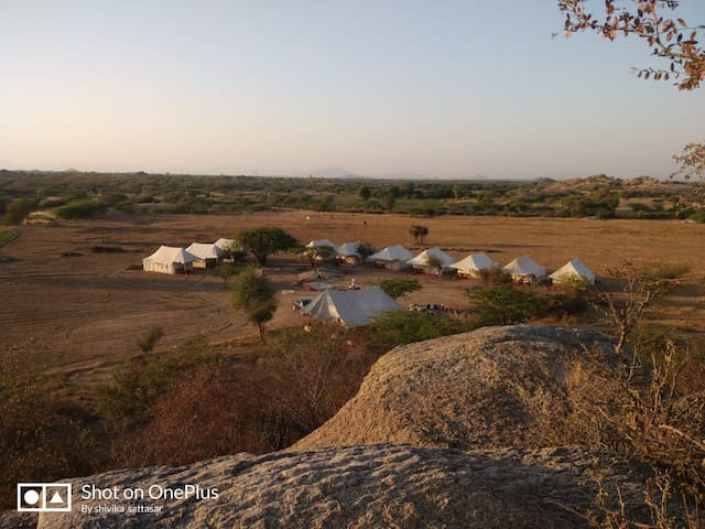 Jawai Jungle Safari in Sirohi