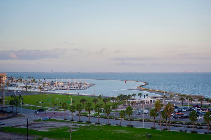 Luxury Ocean View Downtown Condo