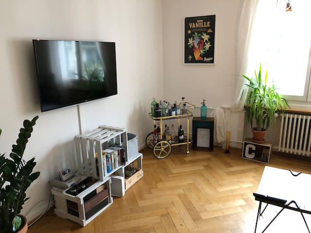 Cozy 3 room apt in flourishin area in Kreis 4