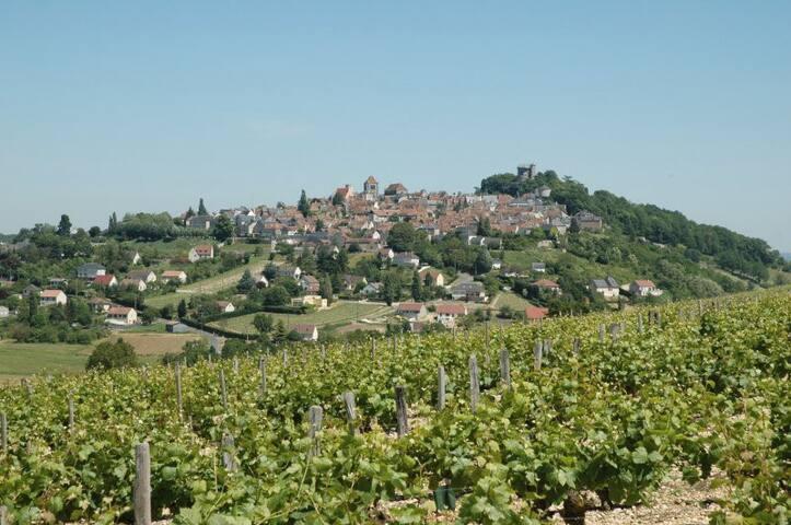 L'ancienne poste! - Neuvy-sur-Loire - Casa