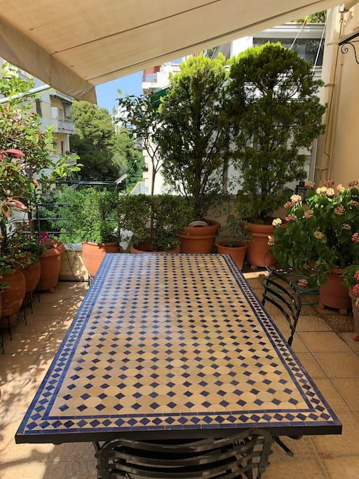 The Beautiful Terrace with flowers, olive tree, lemon trees, mint, basil etc...