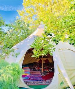 Lotus Belle tent in the Garden