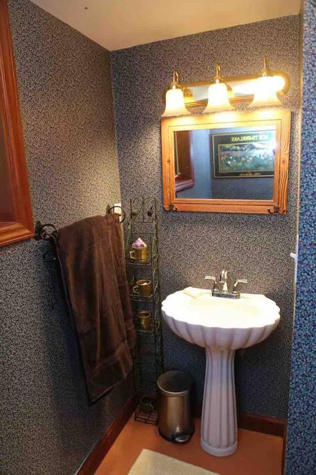 Bathroom Angle 1