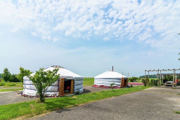 Authentic Mongolian Yurt in the Molkwerum in Friesland.