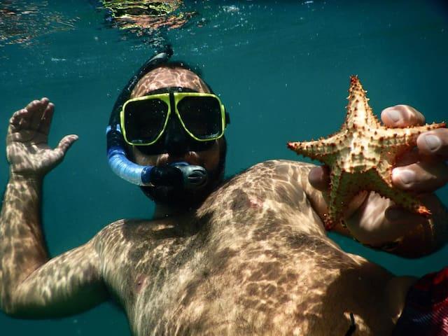 Esperanza Tropical Oasis GreenHouse - Vieques - Hus