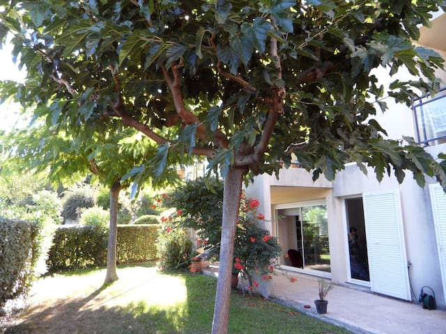 Appartement T3 Aix-en-Provence calme jardinpiscine