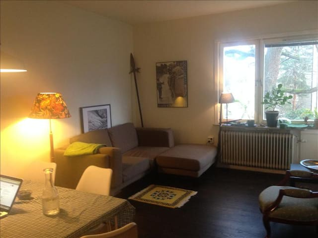 45 m2 apartment - close to everything - Stockholm - Apartment