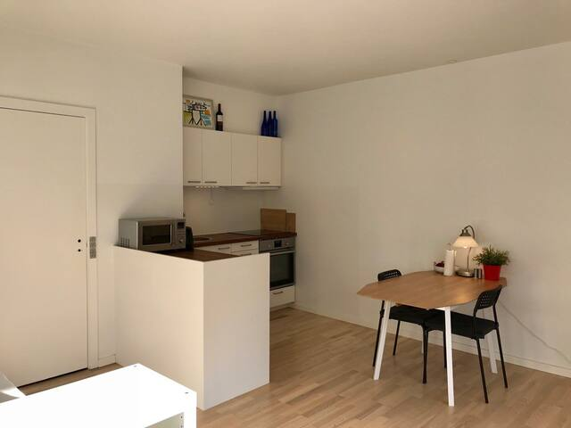 Newly renovated 1-room apartment w balcony