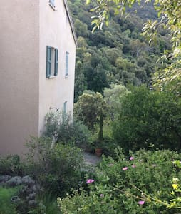 Une chambre en pleine nature - Patrimonio