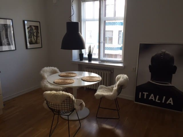 Beautiful entire apartment in heart of Helsinki - Helsinki