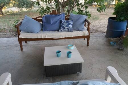 Hospitality in vineyard, olives,oranges trees..