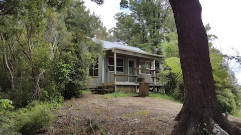 Cabin Fever - Your Private Seclusion in the Forest