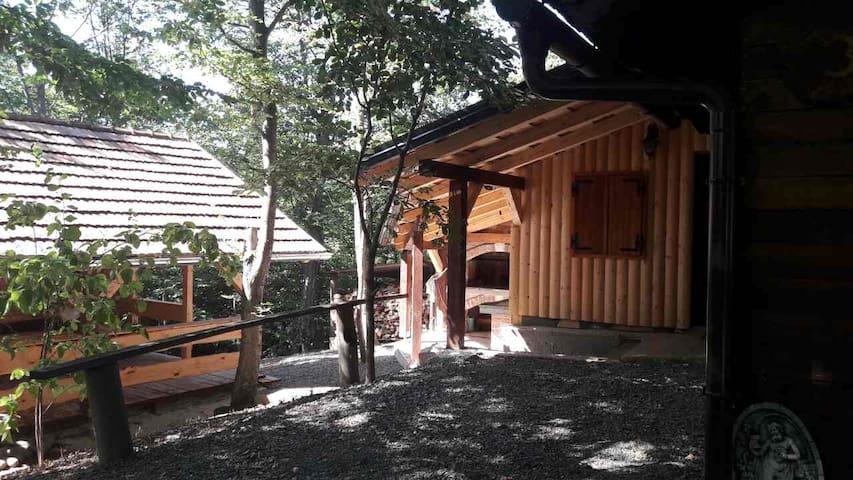 Log house Kaselj