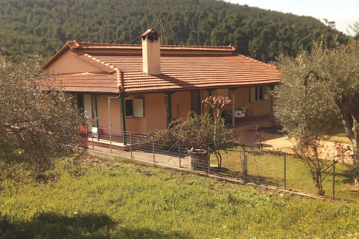 Villa Freedom Evia, Koutsoubri Beach Pefki 34200