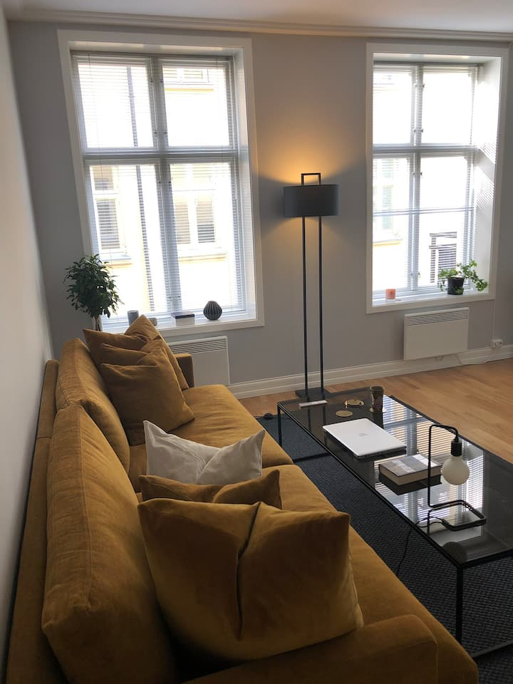 Nice newly renovated apartment in the center