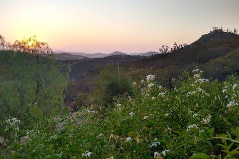 Peaceful Canyon Retreat - Entire guest suite