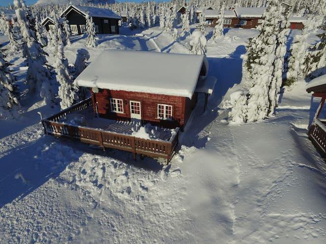 BIHULA,  located at ski destination Skeikampen