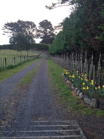 Private Driveway in