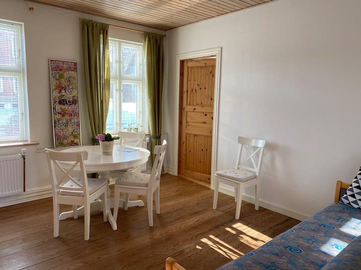 Hyggelig lejlighed i gåafstand til Gram Slot