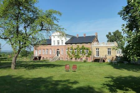 Tetto , im Gutshaus Pohnstorf - Alt Sührkow