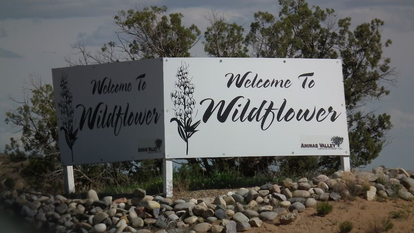 Wildflower Friends & Family Hub