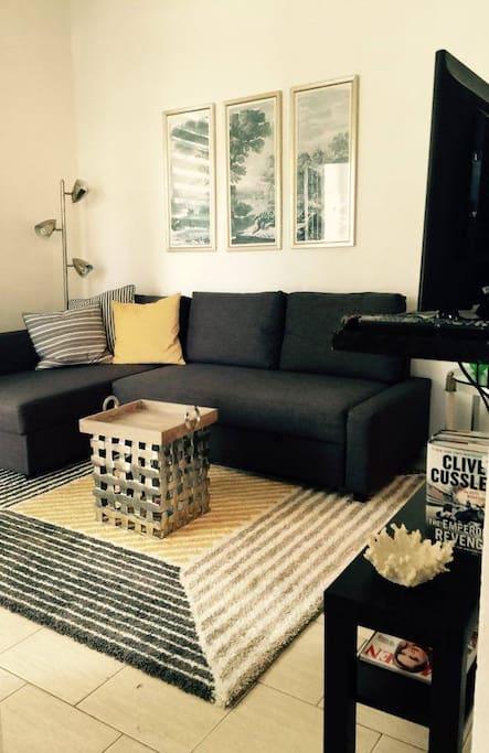 Cozy Living Room; Full Sofa Bed