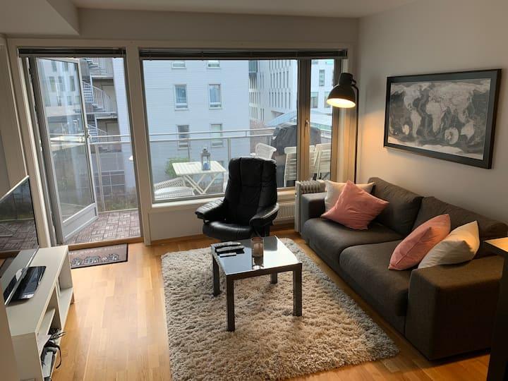 Central Oslo modern 1 bedroom flat
