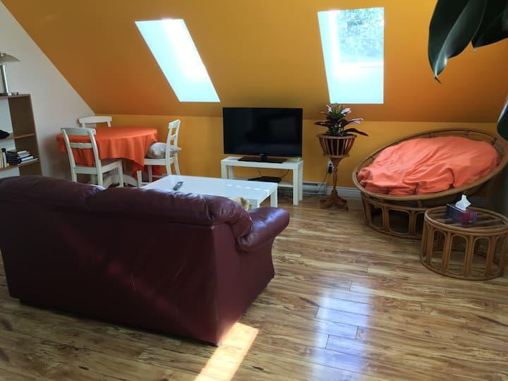 Clean, spacious, quiet & bright 1-bdrm upper suite