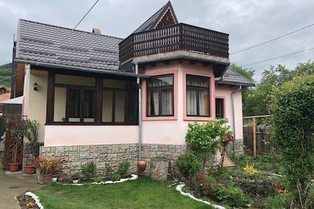 Casa Fetic