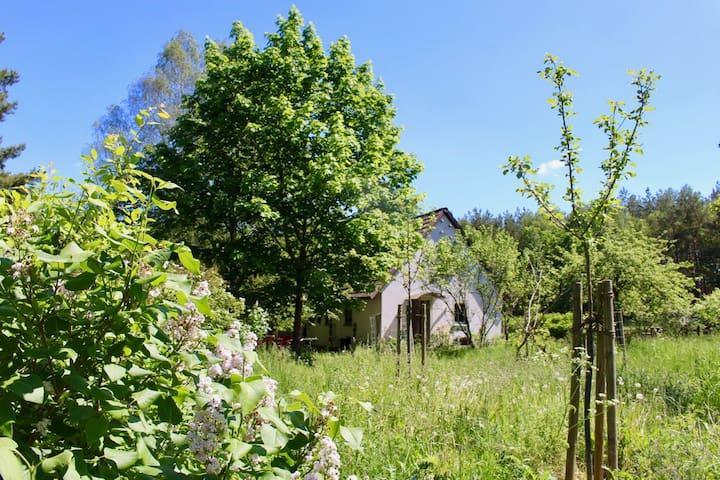 Altes Bauernhaus mitten in der Natur