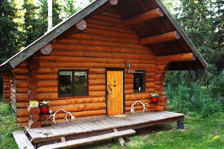 Paradise Log Cabin - Moose Pass - キャビン