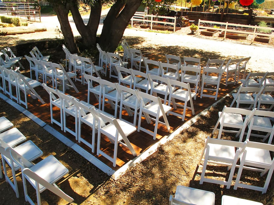 weddings at reptacular zoo in lakeview terrace california united states. Black Bedroom Furniture Sets. Home Design Ideas