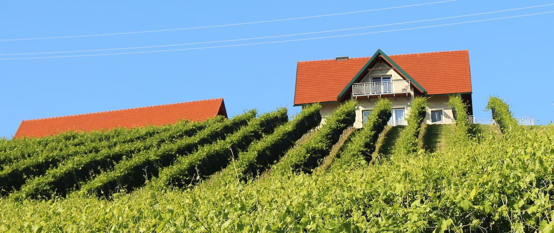 Ferienhaus Weingartenhaus