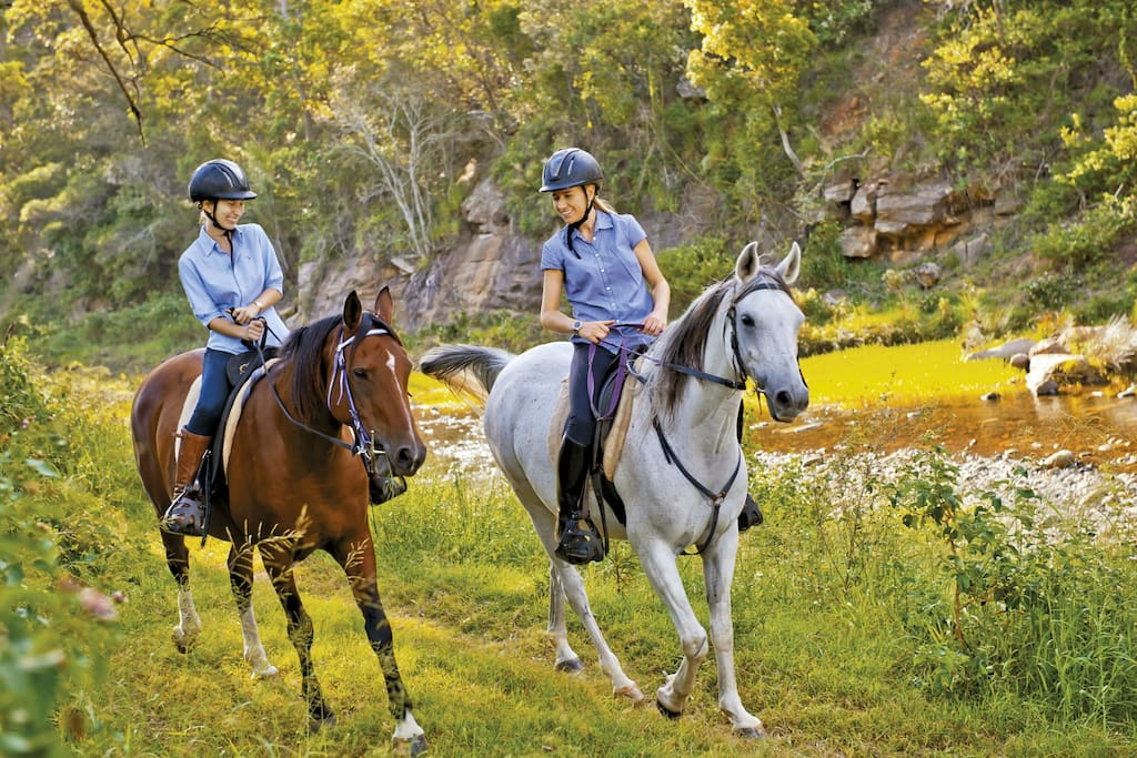You can go horse riding