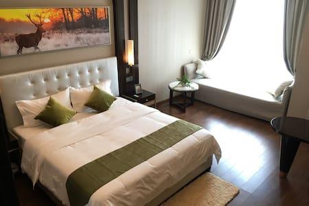 1华远国际公寓 豪华江景房 看烟花最佳位置 开窗见湘江,岳麓山,橘子洲 - 长沙市