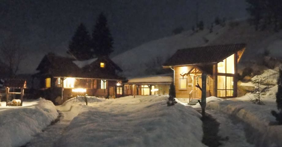 ski chalet Carmel - Sofia Province - Chalupa