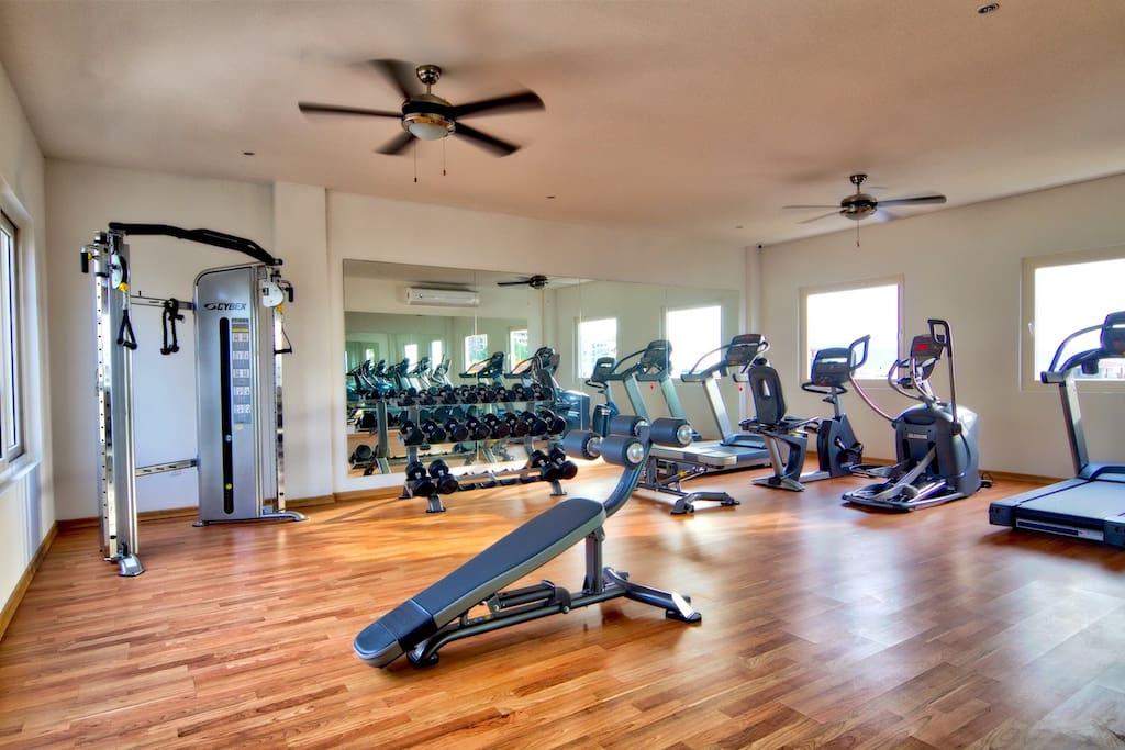 Zenith 307 Gym