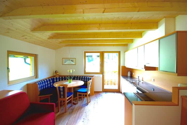 PINEWOOD Studio in the Dolomites