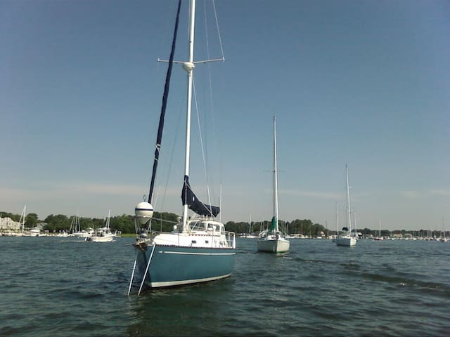 Cape Cod Sailing Paradise - Marion - Barco