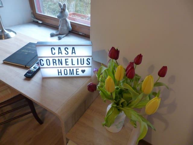 Casa Cornelius , City 5 min , Nature 5 seconds :_)