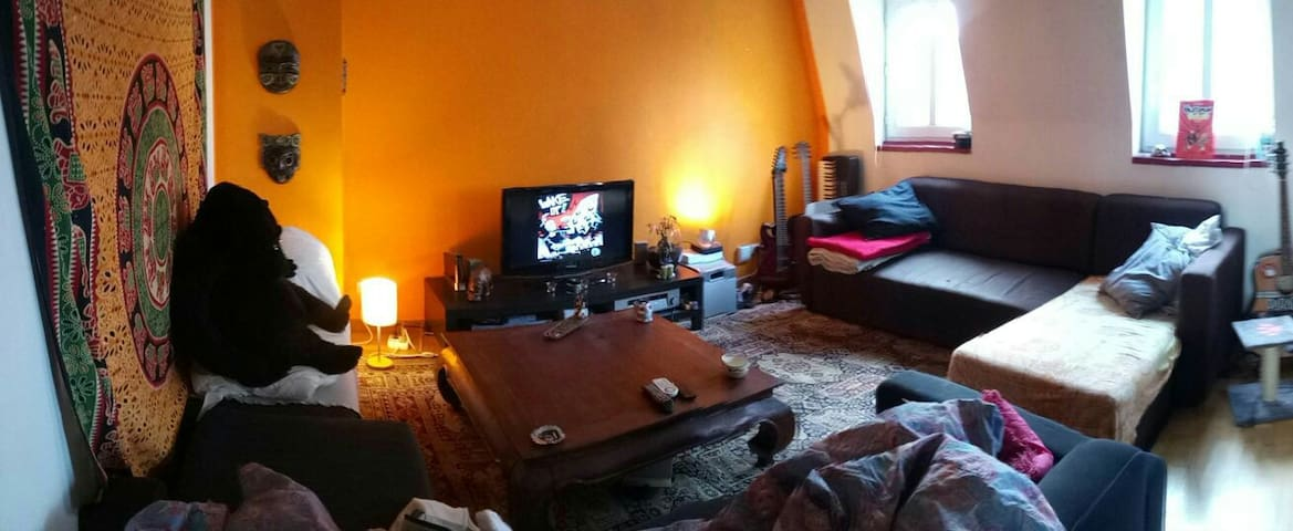 Vieux Lille, Duplex typique chaleureux, citadelle - Lille - Appartement