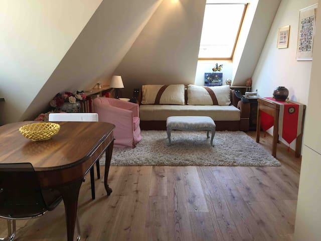 Newly renovated 2 roomed appartment in City Center