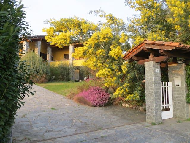 Casa in collina vista Alpi zona lago Maggiore/Orta - Gattico - Rumah