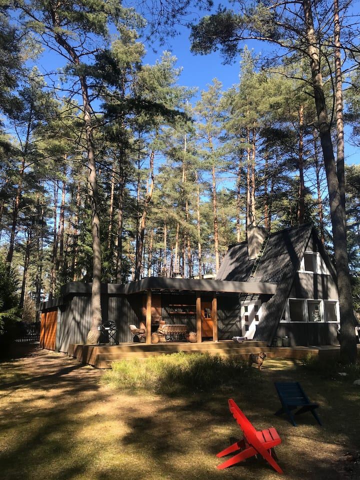 Cozy A-frame forest cabin