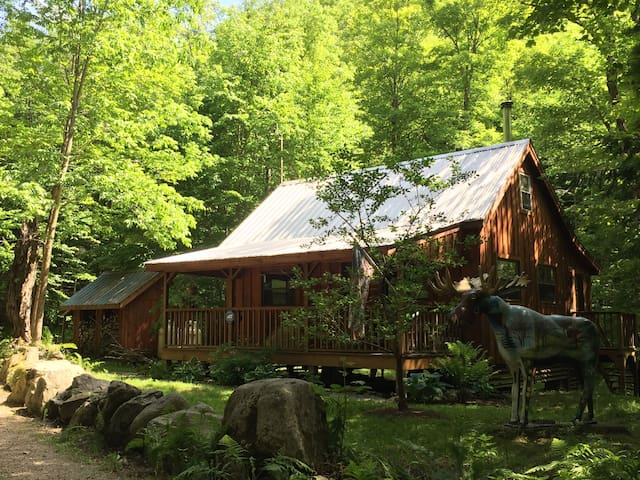 Remote Cabin in VT Nat'l Forest on Stamford Stream